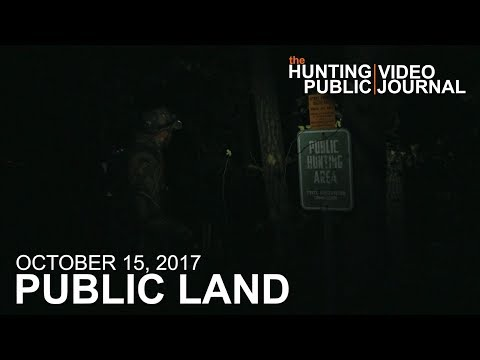 Public Land Day 16: Back to the Buck Nest | The Hunting Public