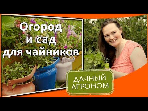 Огород и сад