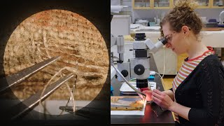 Microscopically reweaving a 1907 painting | CONSERVATION STORIES