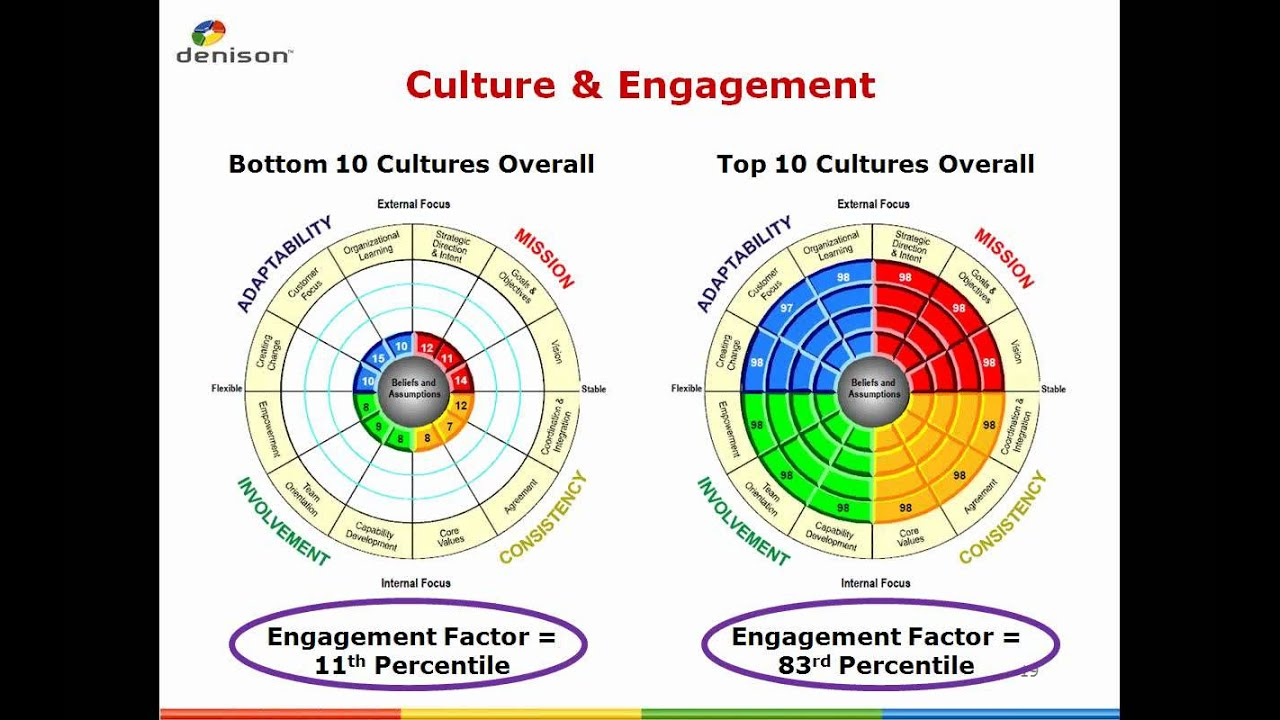 Similarities and differences between the various models of organizational culture