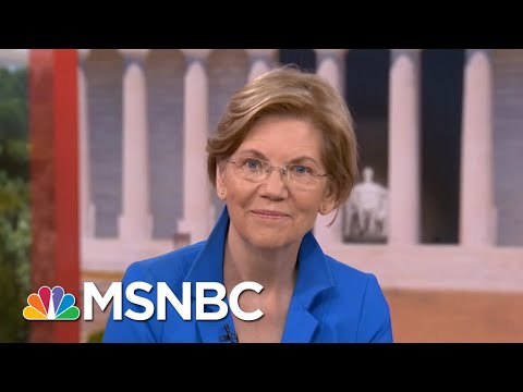 Sen. Elizabeth Warren On Family Separation Policy: It's Entirely On Donald Trump | Hardball | MSNBC