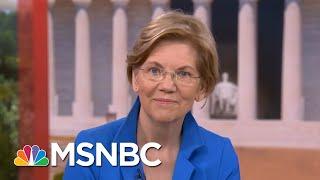 Sen. Elizabeth Warren On Family Separation Policy: It's Entirely On Donald Trump | Hardball | MSNBC