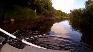 Рыбалка на микро речке в псковской области