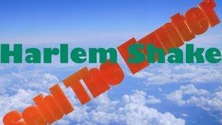 Harlem Shake ( Sebi The Hunter version )
