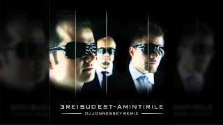 3REI SUD EST - AMINTIRILE (DJ JONNESSEY REMIX) 2014