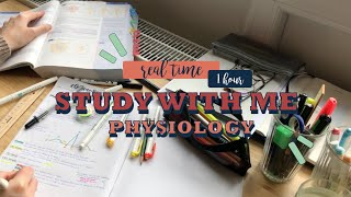 Real time study with me