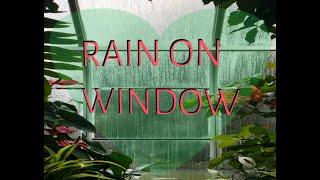 Rain On Window    Heavy Rain For Sleep    Study    Relaxation
