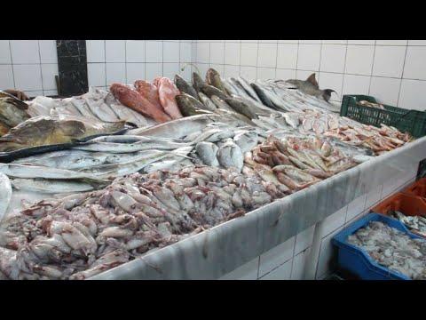 الصيد بالمتفجرات يضرّ الإنسان والبيئة في ليبيا
