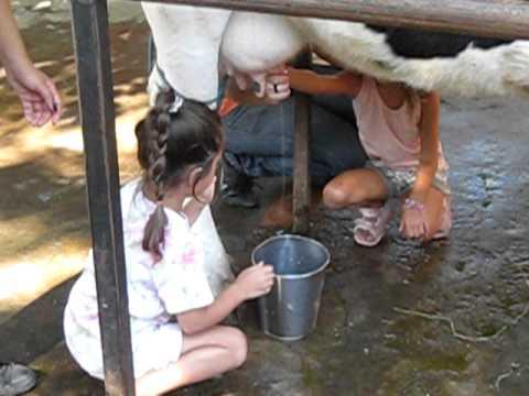 Me saca la leche antes de que su novio llegue a casa - 2 part 8