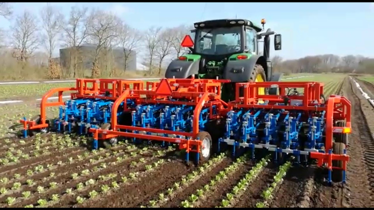 VED - Automatic Weeder