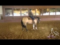 horse training Reining Horse Training - Spinning on The Correct Foot with Mirjam Stillo