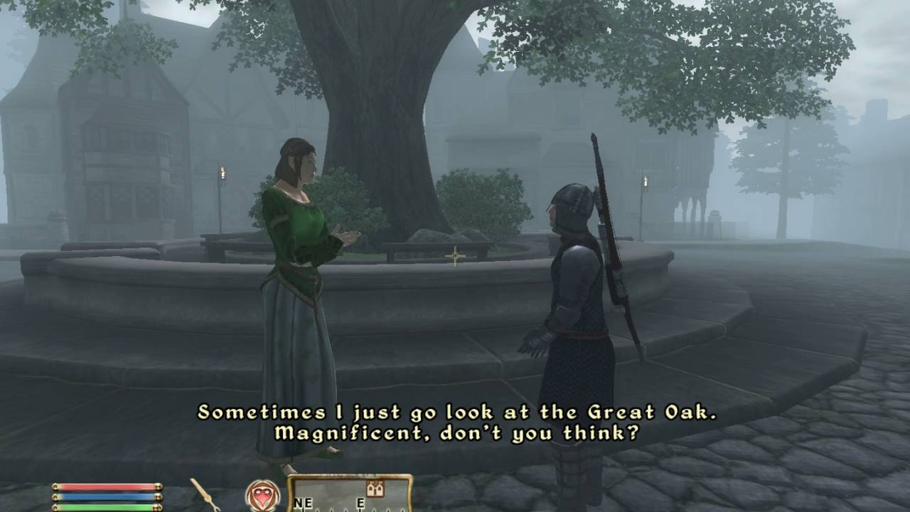 Oblivion Npc Dialogue Is The Greatest Dialog Youtube