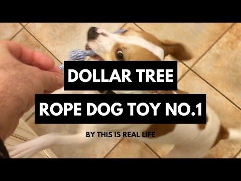 dollar-tree-rope-dog-toy-review-no-1---just-$1