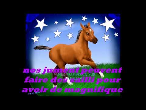 jeux d'elevage de chevaux en ligne
