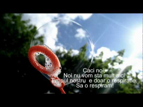 Brooke Fraser CS Lewis Song Subtitles (Romanian)