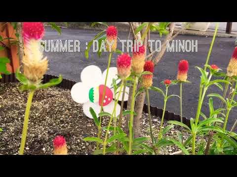 Summer Festival ( 夏祭り ) at Minoh Park, Osaka. 「滝道ライトアップ・キャンドルロード」