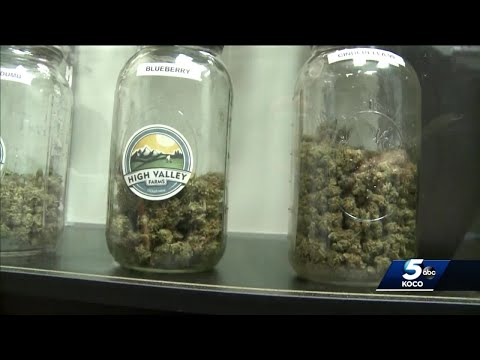 Group Wants Lawmakers To Override Gov. Stitt's Veto Of Medical Marijuana Delivery Bill