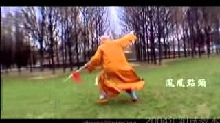 Shaolin Kung Fu by Shi Heng Jun