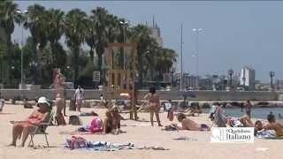 Alga tossica a Bari, le reazioni in spiaggia