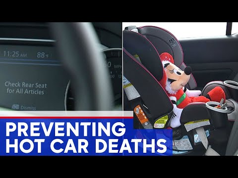 Michelle Taylor - Alerts in Your Vehicle That Children Are In The Back Seat!