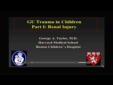 Genitourinary Trauma in Children- Renal Injuries by Dr George Taylor thumbnail