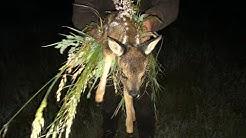 So retten Landwirte und Jäger Tiere vor dem Mähtod