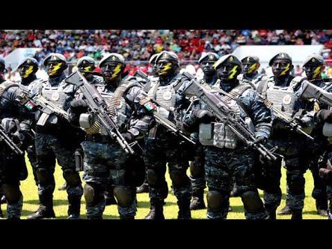 Gendarmería Grupo de Reacción (GEO) | Policía Federal de México