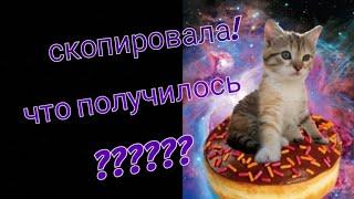 Повторяю картинки котят.😍😍