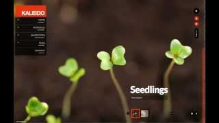 Kaleido Fullscreen - Creating Fullscreen Slideshows