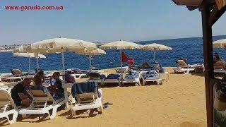 Египет Шарм Эль Шейх Отель Stella Di Mare Октябрь 2019