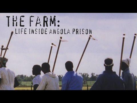 The Farm: Angola, USA ( 1998 )