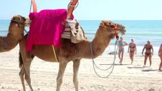 видео Незабываемый отдых в Тунисе