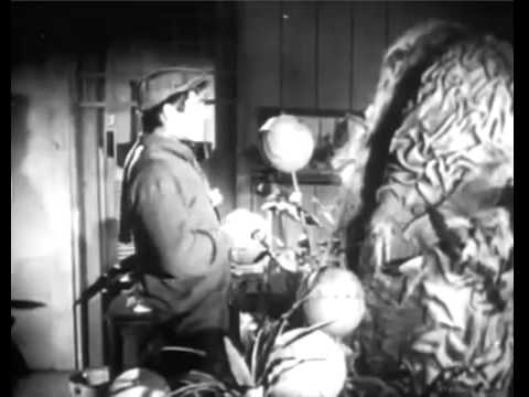 The Little Shop Of Horrors 1960   Full Movie