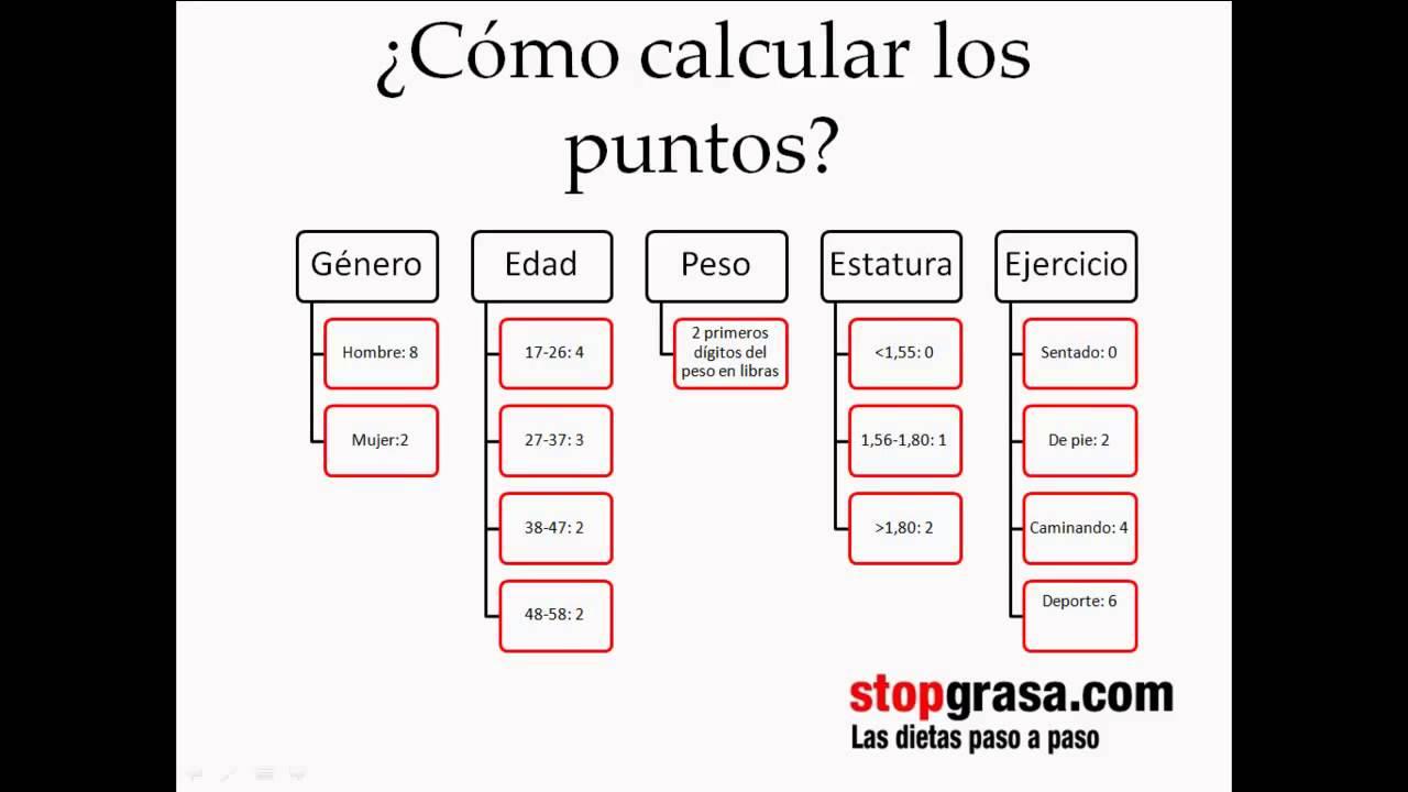 Dieta de los puntos pdf completa en espanol