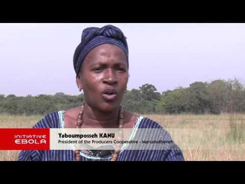 Ebola Regional film