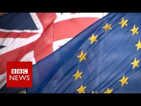 What happens after the EU Referendum? BBC News