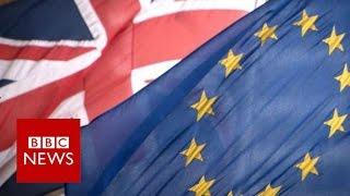 What happens after the EU Referendum? BBC News