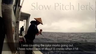 Slow pitch jigging, Japanese Angler's Secrets