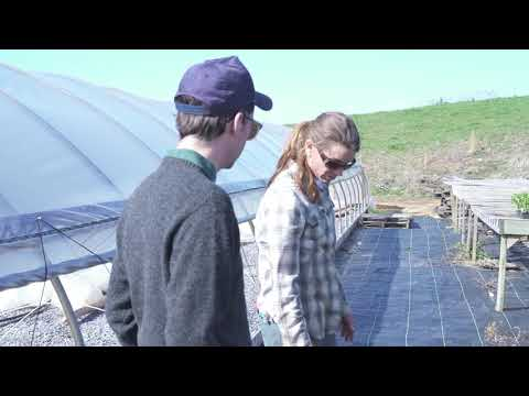 TNT Farms - Radio Bristol Farm Report