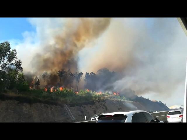 Reabre la autovía que une Oporto con Galicia tras ser amenazada por el fuego