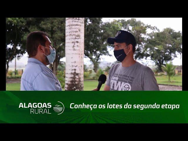 Leilão Vaquejada e Trabalho: Conheça os lotes da segunda etapa