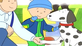 Funny Animated Cartoons 🐾 Caillou and the Friendly Dog 🐶 Caillou Holiday Movie | Cartoons for Kids