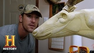 Swamp People: Taxidermy | History
