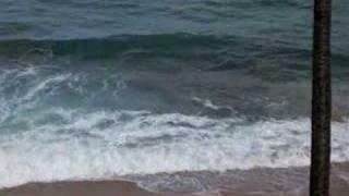 OceanScape Waimea