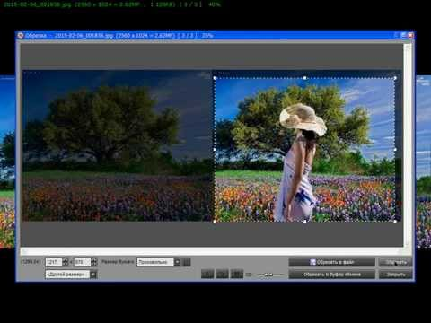 Как изменить фон на фото с помощью FastStone Image Viewer