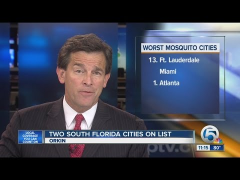 Two Florida cities among 'worst mosquito cities'