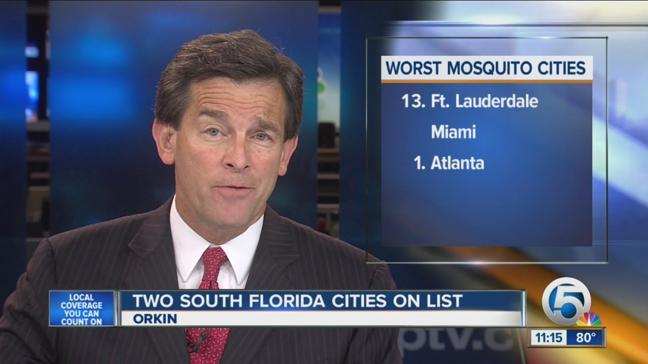 These Are the Worst Mosquito Cities in America