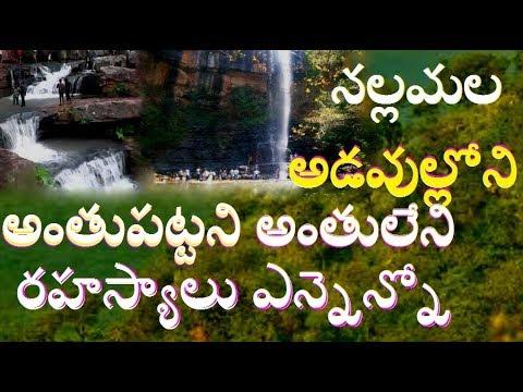 నల్లమల అడవుల్లోని రహస్యాలు  Secrets in Nallamala Forests //Secrets Behind Shiva Temples//Saleshwaram