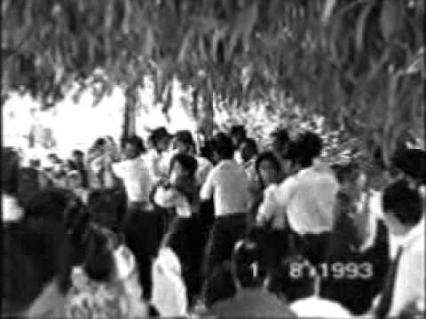 canedo de basto 1993