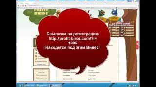 Птички 500 рублей в день без приглашений + подводные камни!